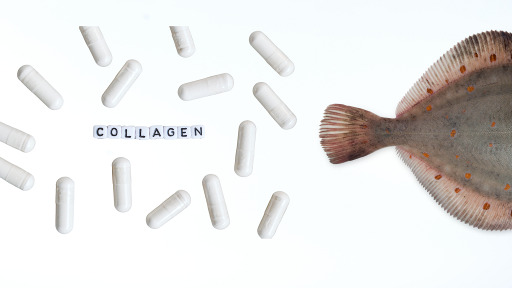 Why fish collagen? The difference between the types of fish collagen.